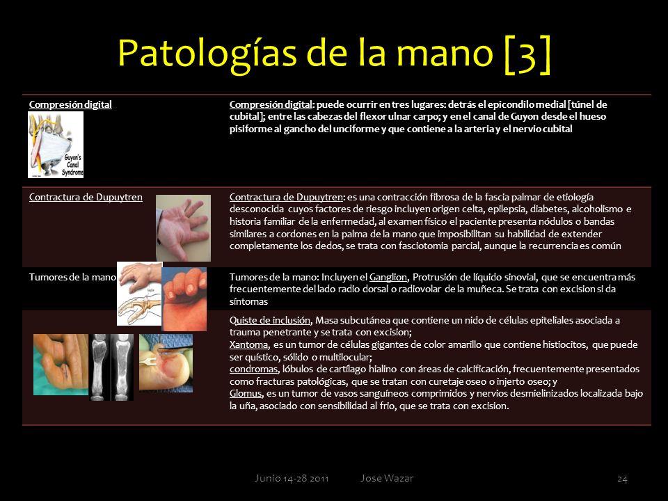 Patologías de la mano [3]